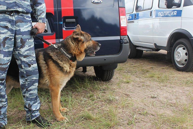 Учения МЧС под Белгородом. Комплексная безопасность, фото-11