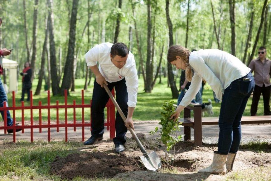 У Чернігові реконструювали парк Березовий гай, фото-8