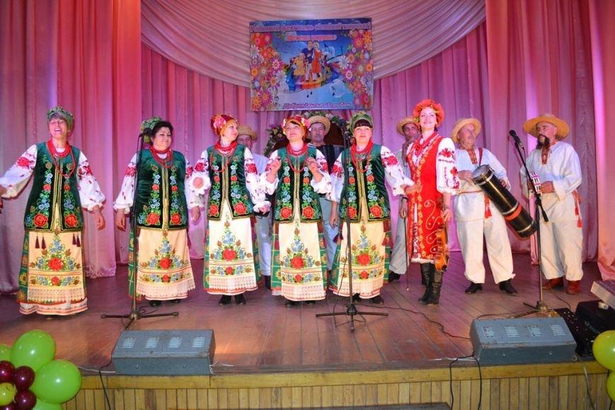 Фестиваль семейного творчества состоялся в Добропольском райне, фото-8