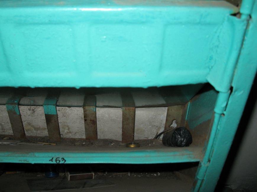 В Мелитополе наркосбытчики наладили дистанционную торговлю, фото-2