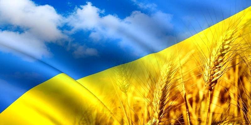 Дни Украины в мире: полтора десятка поводов для гордости всего за несколько дней, фото-3