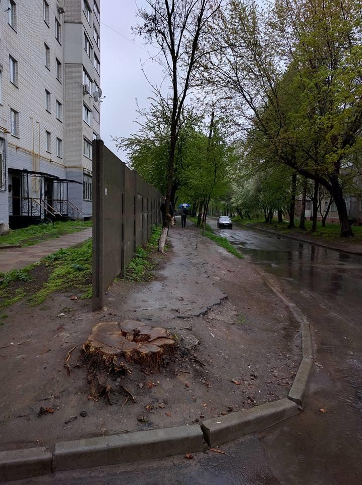 Пешеходам на улице Волковича тротуар не нужен. Так считают черниговские коммунальщики, фото-4