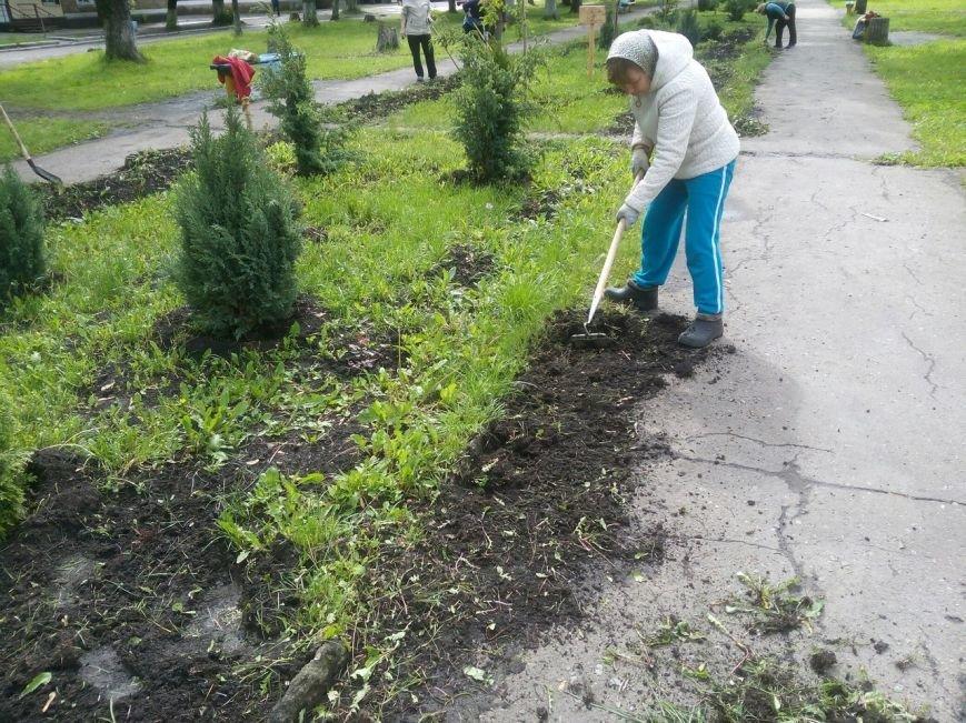 Стартовал второй этап проекта «Ваучер за работу» в Белозерском, фото-1