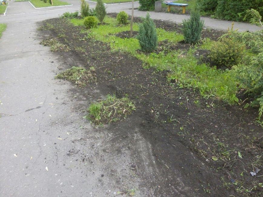 Стартовал второй этап проекта «Ваучер за работу» в Белозерском, фото-3