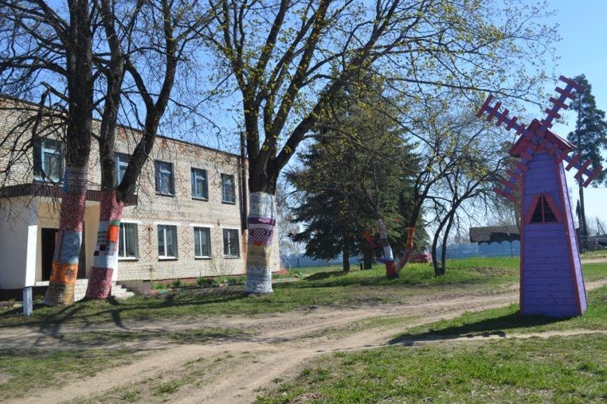 «Платья» для деревьев сшили в Полоцком районе (+ фото), фото-3