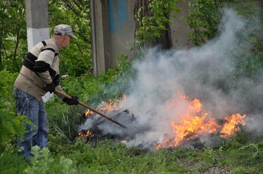 В Краматорске уничтожили наркотиков на миллион гривен, фото-5