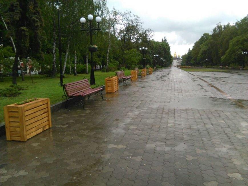 На Аллее героев в Чернигове установили лавочки-клумбы, фото-9