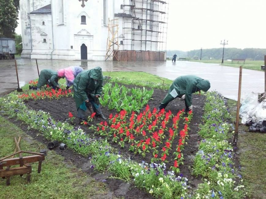На Аллее героев в Чернигове установили лавочки-клумбы, фото-6