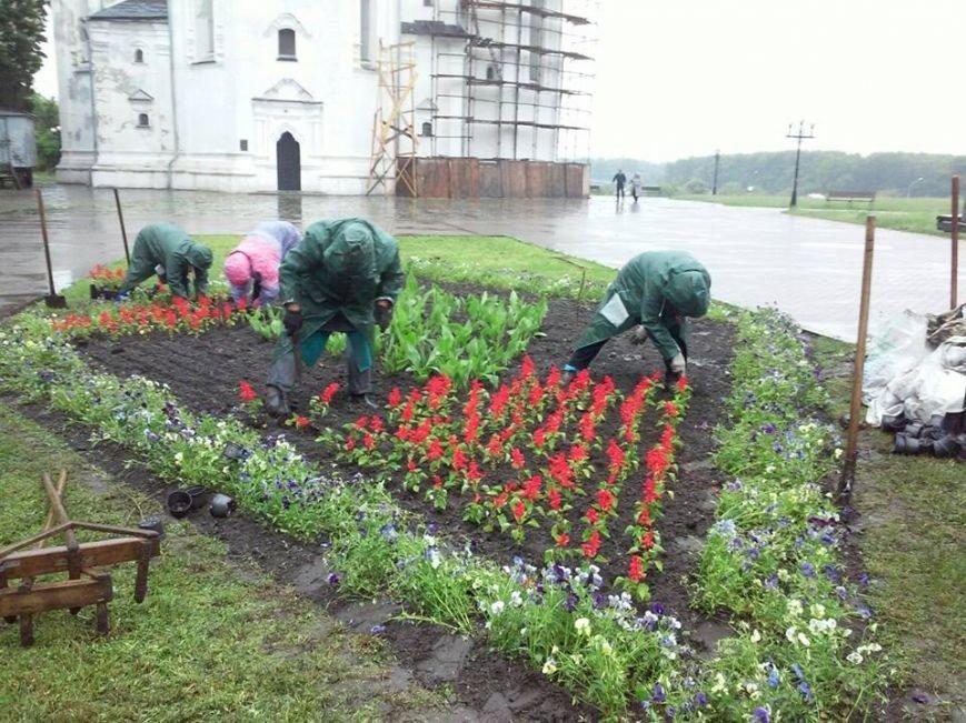 На Аллее героев в Чернигове установили лавочки-клумбы, фото-2