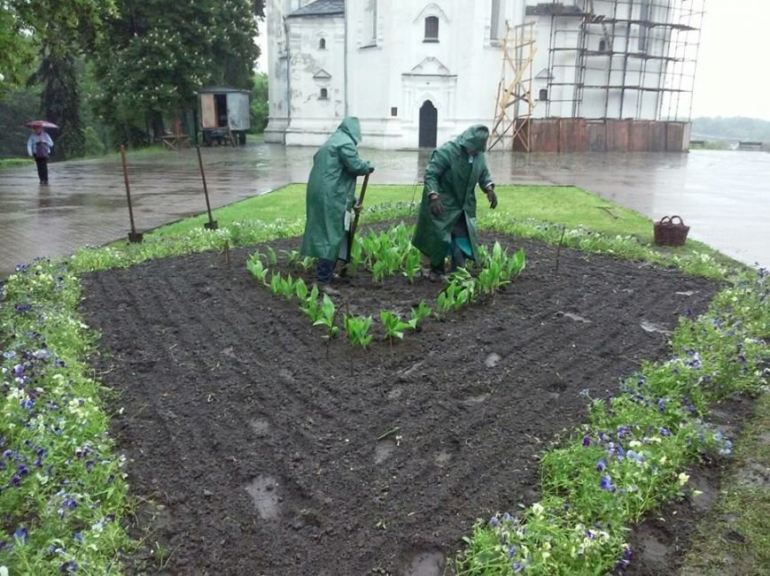 На Аллее героев в Чернигове установили лавочки-клумбы, фото-5