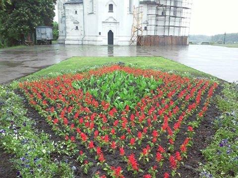 На Аллее героев в Чернигове установили лавочки-клумбы, фото-15