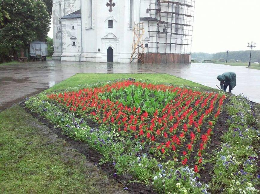 На Аллее героев в Чернигове установили лавочки-клумбы, фото-10