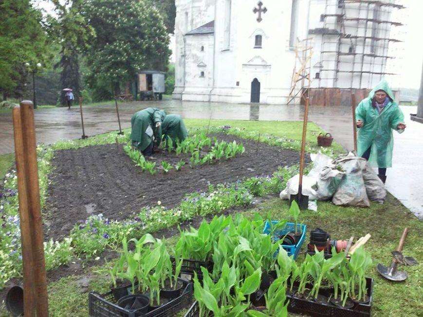 На Аллее героев в Чернигове установили лавочки-клумбы, фото-4