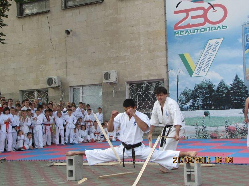 В Мелитополе прошел фестиваль боевых искусств «Таврический тигр», фото-4