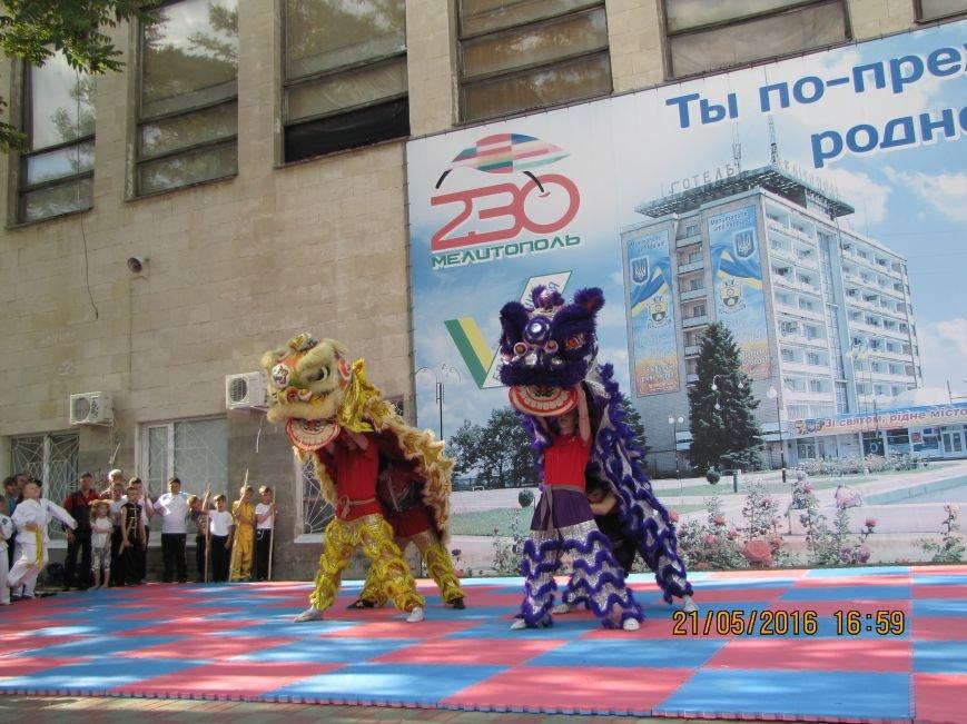 В Мелитополе прошел фестиваль боевых искусств «Таврический тигр», фото-3