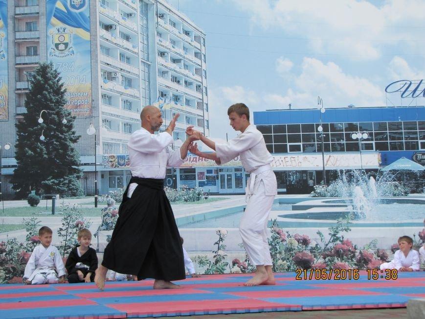 В Мелитополе прошел фестиваль боевых искусств «Таврический тигр», фото-5