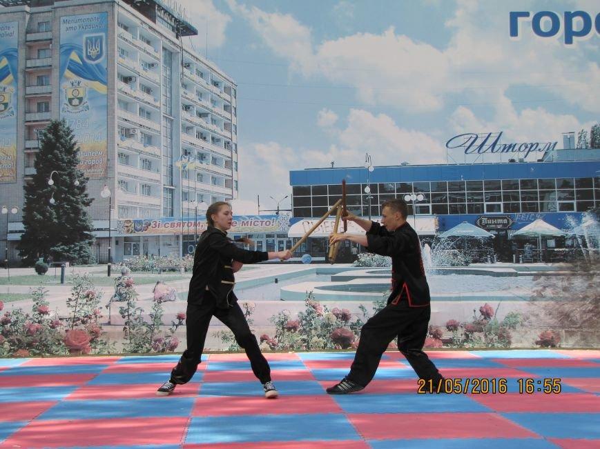 В Мелитополе прошел фестиваль боевых искусств «Таврический тигр», фото-1