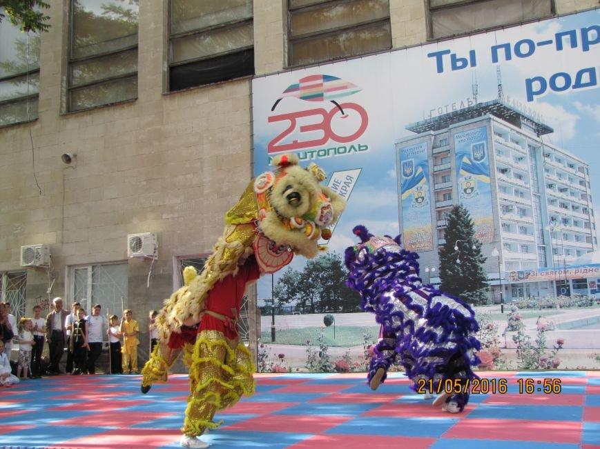 В Мелитополе прошел фестиваль боевых искусств «Таврический тигр», фото-2