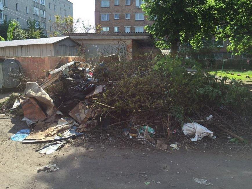 В Конотопі на місці нещодавно прибраного парку з'явилося свіже сміттєзвалище, фото-3