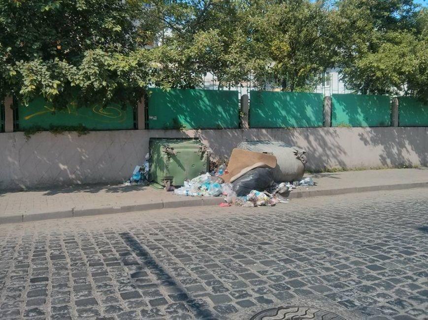 У Чернівцях сміття розкидане по тротуарах, фото-2