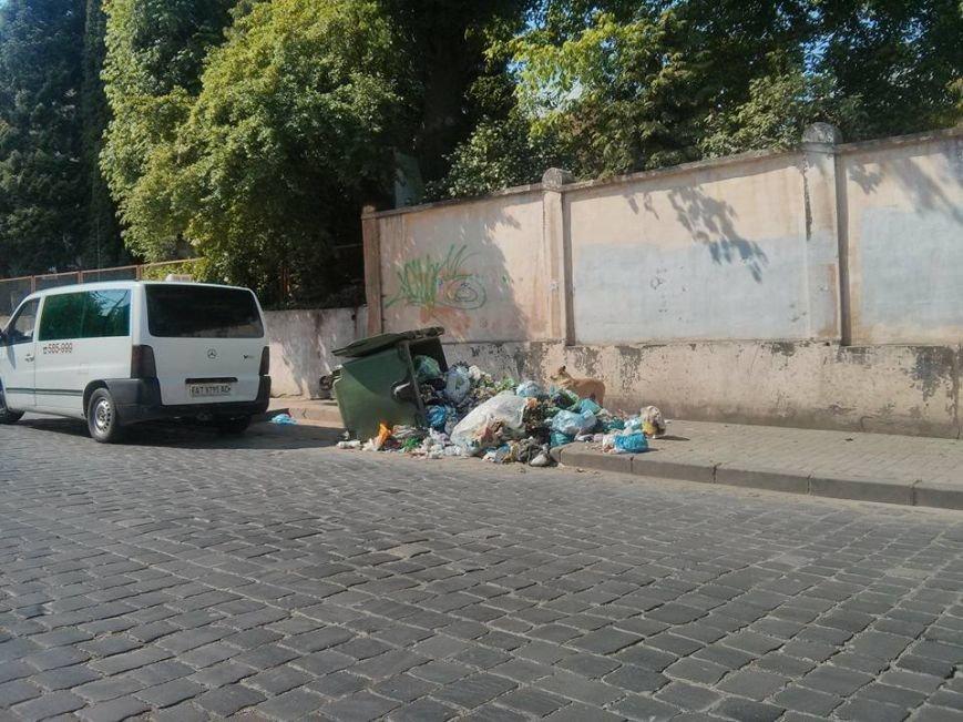 У Чернівцях сміття розкидане по тротуарах, фото-1