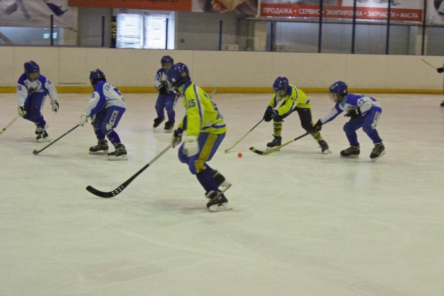 В Ульяновске прошёл турнир среди юных хоккеистов, фото-1