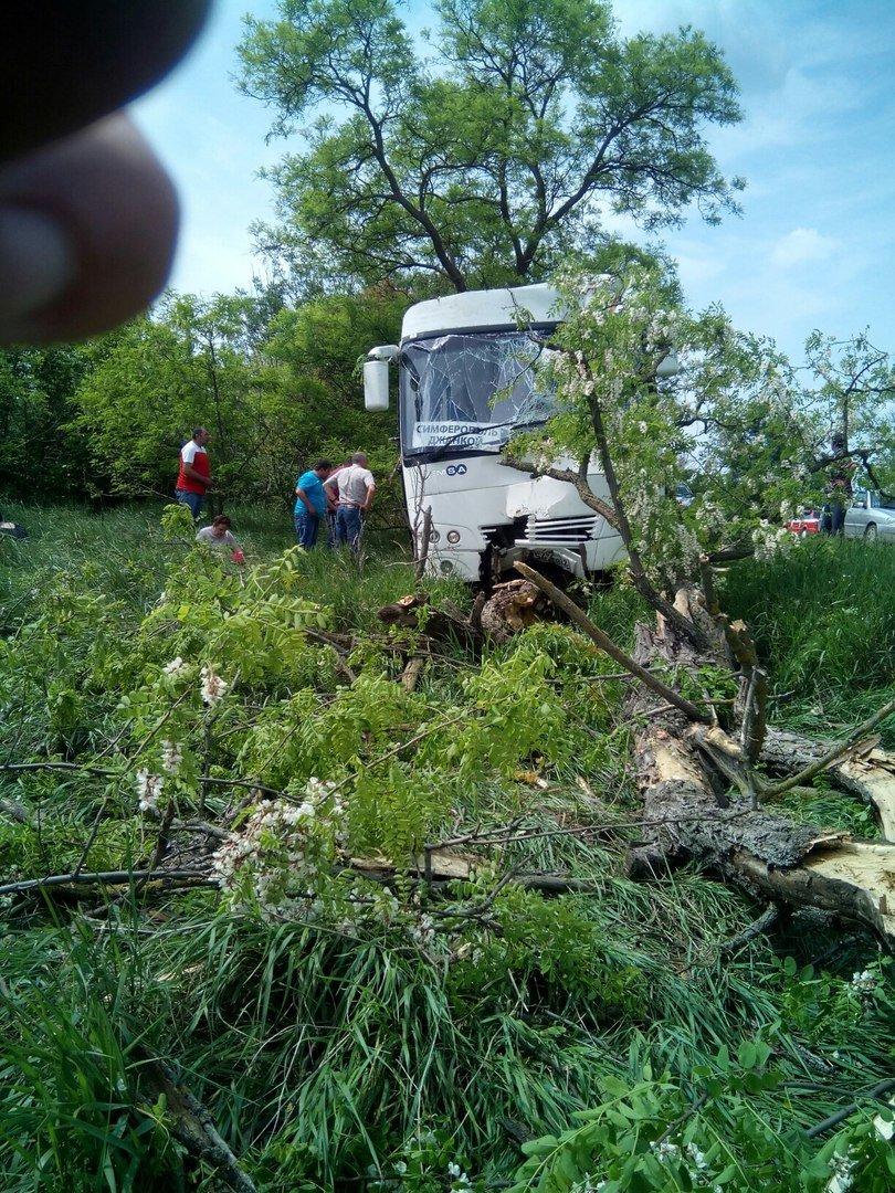 В Крыму сошел с трассы рейсовый автобус, фото-2