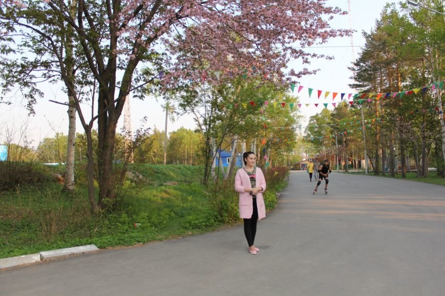 Прогулки по Южному продолжаются. День цветущей сакуры, фото-4