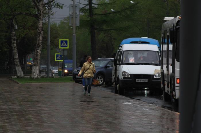 В Южно-Сахалинске идут дожди..., фото-12
