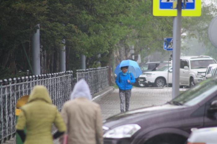В Южно-Сахалинске идут дожди..., фото-16
