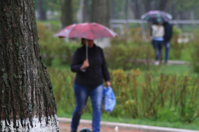 В Южно-Сахалинске идут дожди..., фото-7