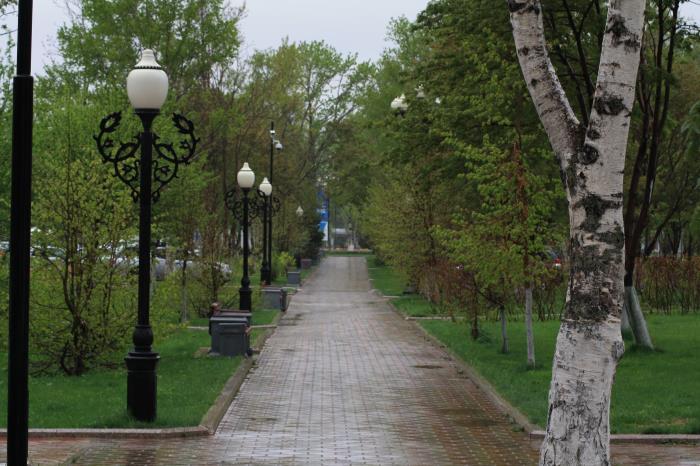 В Южно-Сахалинске идут дожди..., фото-1