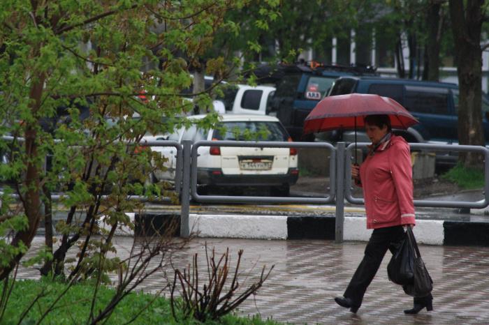 В Южно-Сахалинске идут дожди..., фото-6