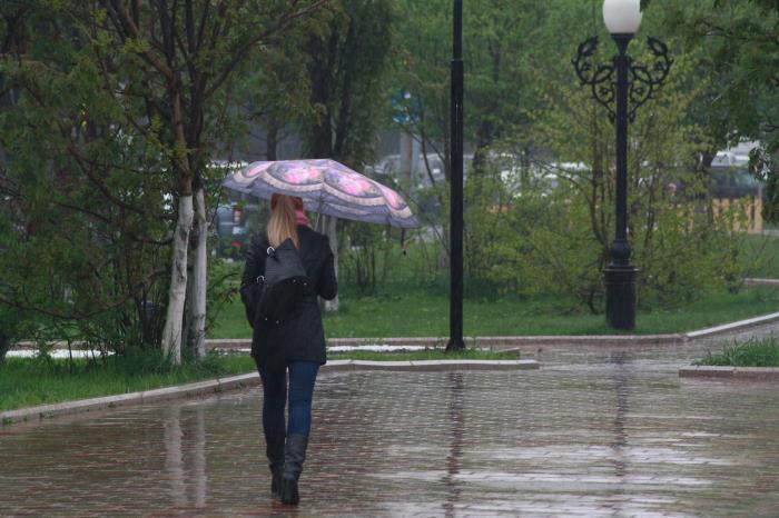 В Южно-Сахалинске идут дожди..., фото-17