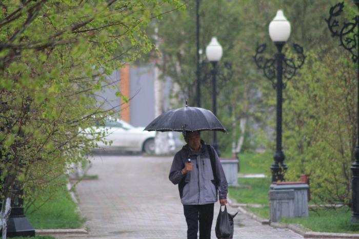 В Южно-Сахалинске идут дожди..., фото-14