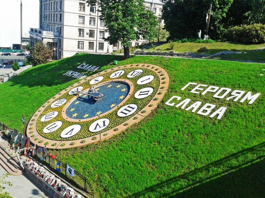 Возле цветочных часов на Майдане высадили тагетисы (ФОТОФАКТ), фото-1