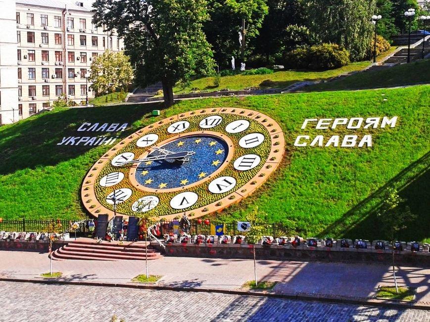 Возле цветочных часов на Майдане высадили тагетисы (ФОТОФАКТ), фото-2