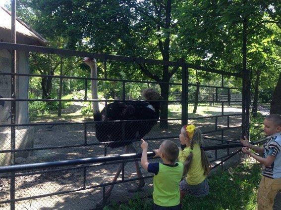 """""""Солнечные дети"""" с полицейскими побывали в зоопарке (фото), фото-2"""