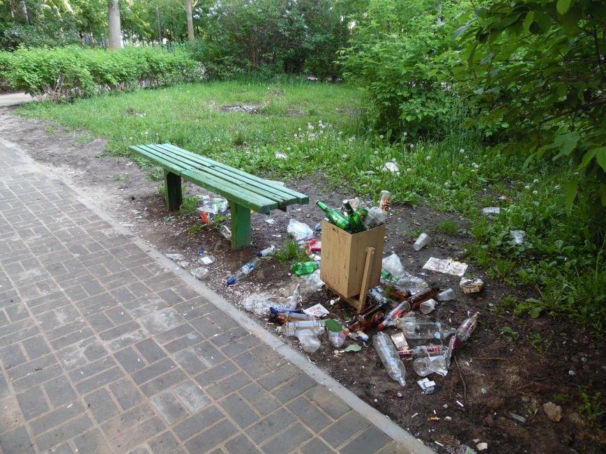 Выкорчеванные кусты и мусор: как обновляется Аллея ветеранов. Фото, фото-2