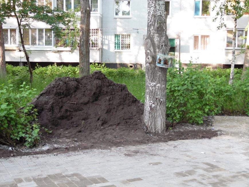 Выкорчеванные кусты и мусор: как обновляется Аллея ветеранов. Фото, фото-4