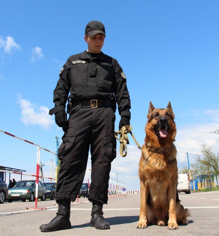 С пограничниками наравне несут службу и служебные собаки (фото), фото-5