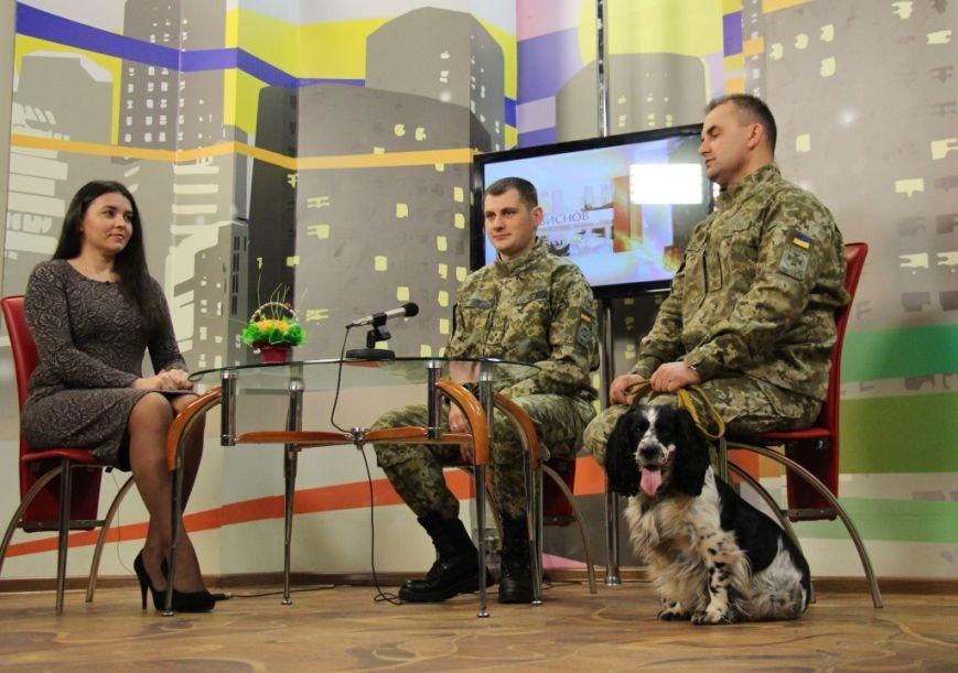С пограничниками наравне несут службу и служебные собаки (фото), фото-2