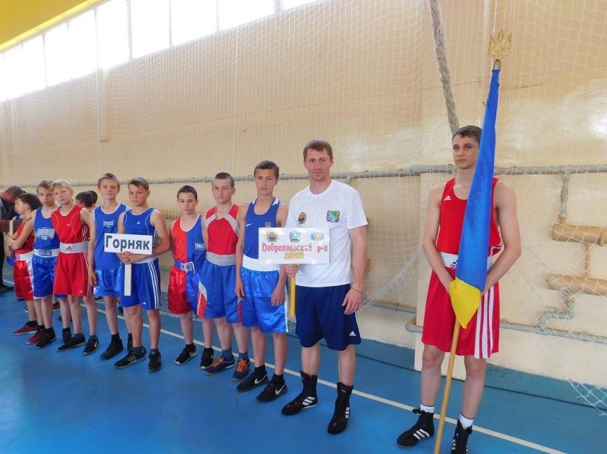 Боксеры Добропольского района принимают участие во Всеукраинском турнире по боксу, фото-1
