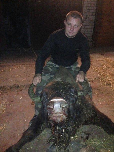 Заступник директора Конотопського лісгоспу, що позував на фоні вбитого зубреняти, не з'являється на роботу, фото-1