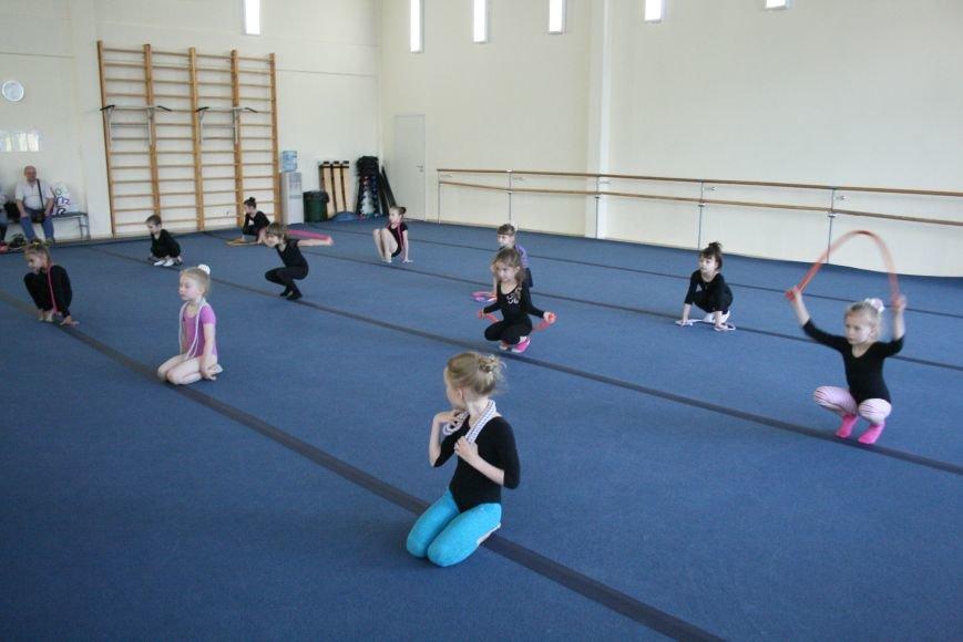 Открытый урок по художественной гимнастике провели в Троицком Дворце Спорта, фото-1