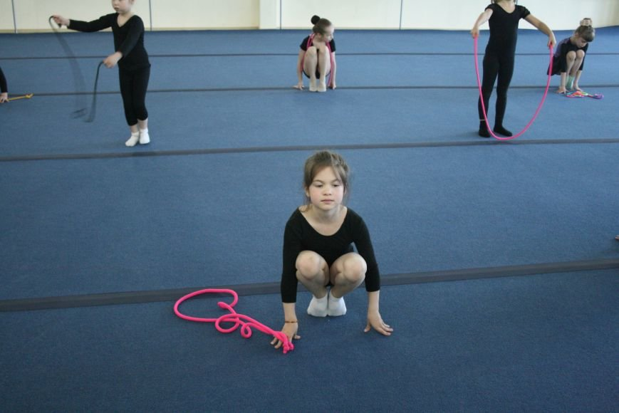 Открытый урок по художественной гимнастике провели в Троицком Дворце Спорта, фото-3