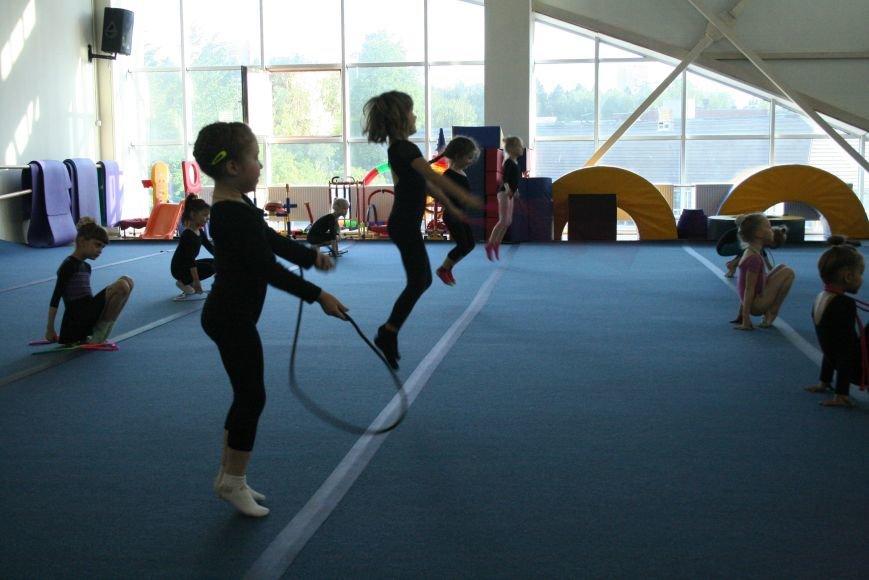Открытый урок по художественной гимнастике провели в Троицком Дворце Спорта, фото-2