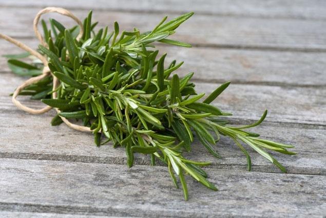 Італійські пряні трави-приправи в житті українців, фото-2