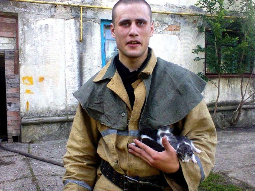 В Херсонской области спасатели потушили пожар и спасли трех котят (фото), фото-1