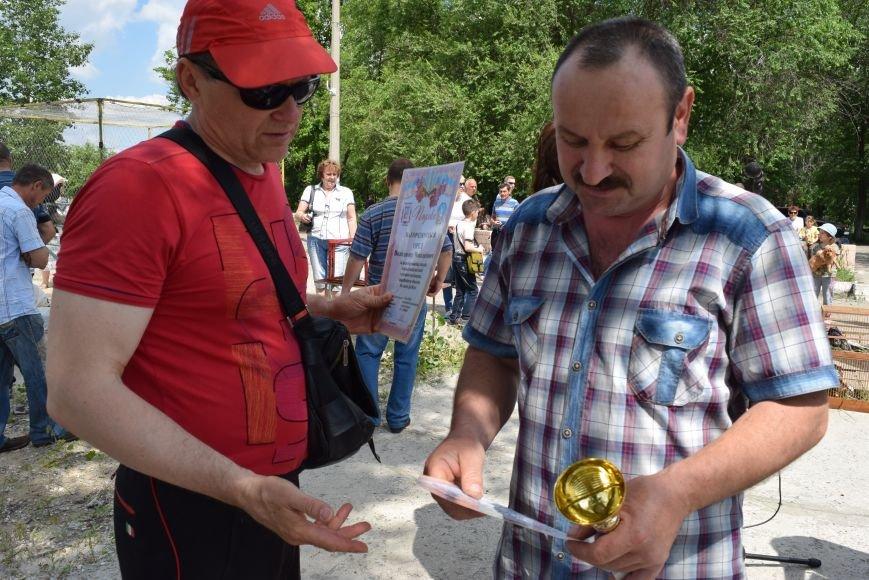 В Северодонецке прошла выставка голубей (ФОТО), фото-5